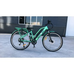 NorthEBike Step Through E-Bike (Green)