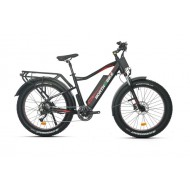NorthEbike Mountain (BLACK)
