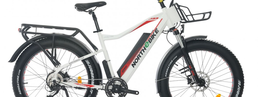 The basics: structure and functionalities of the E-bike